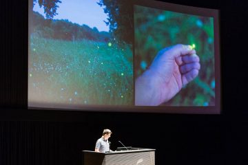 Alec Soth and fireflies